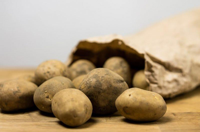 Cremiges Kartoffelgratin ohne Käse