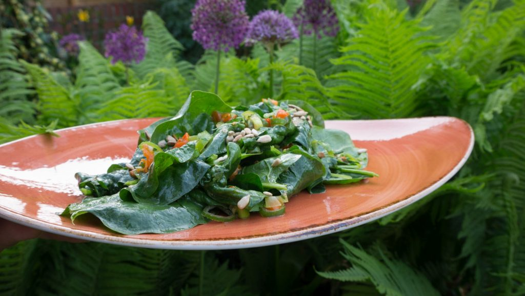 Blattspinat Salat