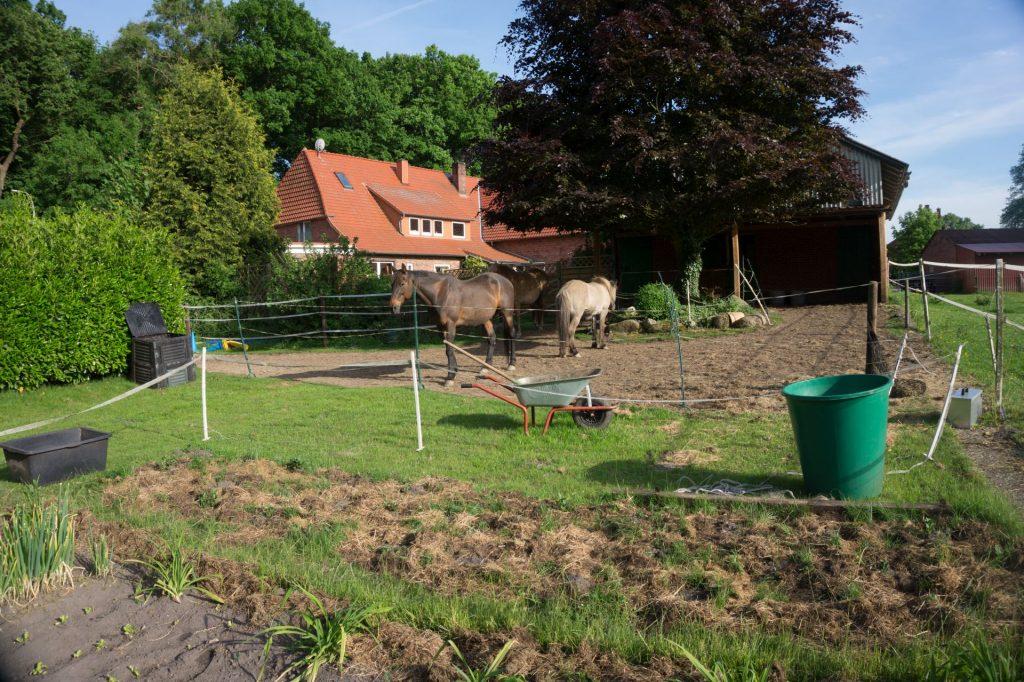Garten und Pferde